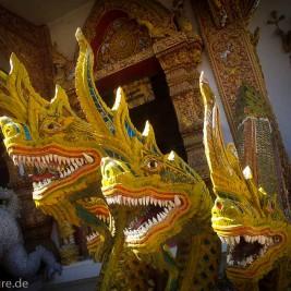 Chiang Mai / Thailand