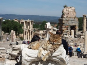 Ephesos Selcuk / Türkei